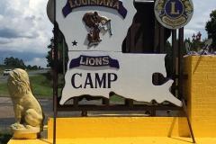 Lions Camp 001